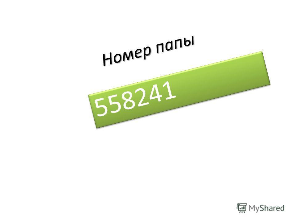 Номер папы 558241