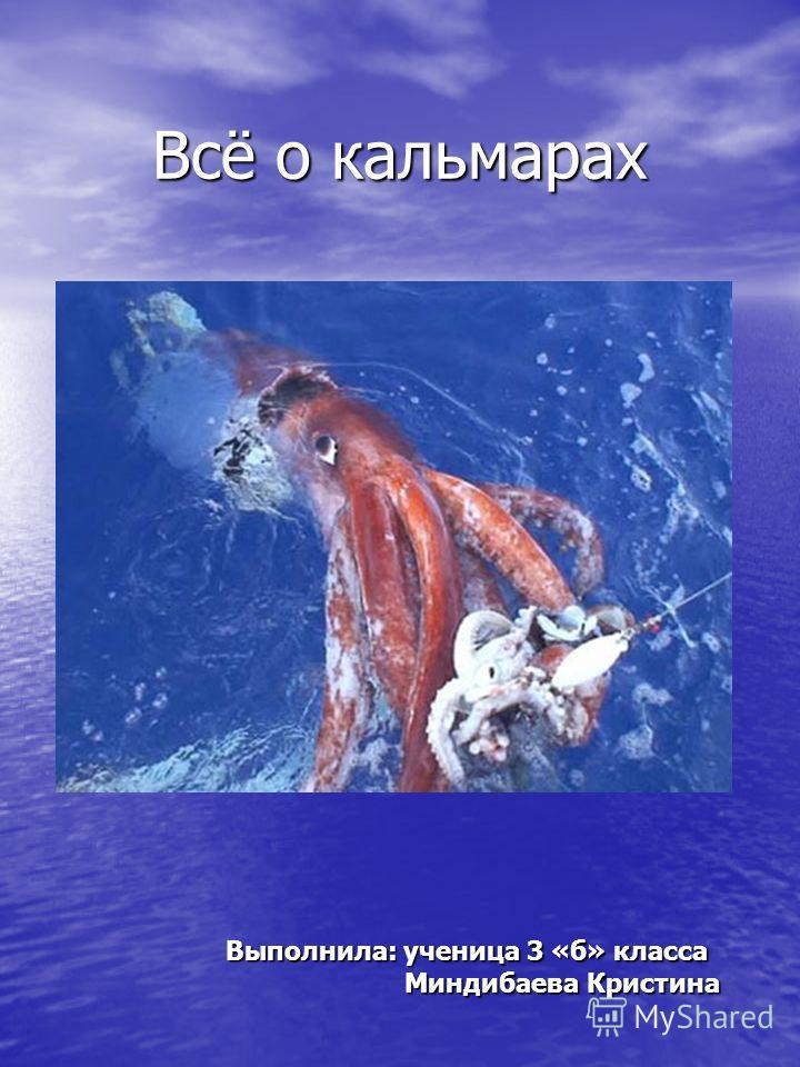 Всё о кальмарах Выполнила: ученица 3 «б» класса Миндибаева Кристина Миндибаева Кристина