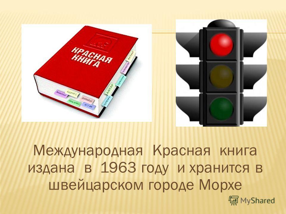 Международная Красная книга издана в 1963 году и хранится в швейцарском городе Морхе