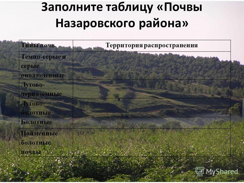 Заполните таблицу «Почвы Назаровского района» Типы почвТерритория распространения Темно-серые и серые оподзоленные Лугово- черноземные Лугово- болотные Болотные Пойменные болотные почвы