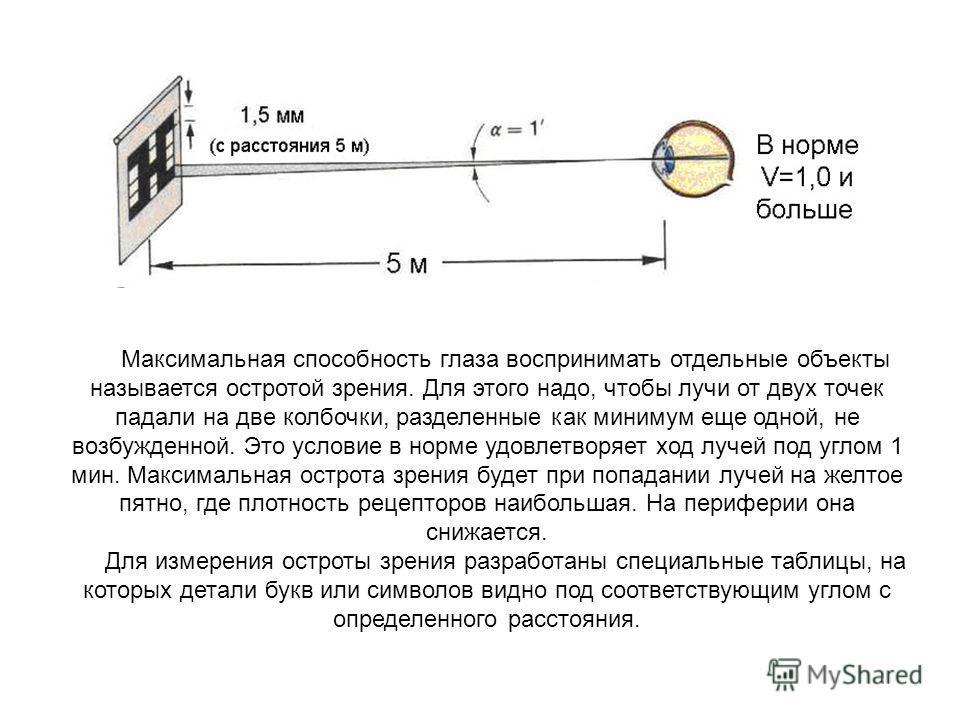 Максимальная способность глаза воспринимать отдельные объекты называется остротой зрения. Для этого надо, чтобы лучи от двух точек падали на две колбочки, разделенные как минимум еще одной, не возбужденной. Это условие в норме удовлетворяет ход лучей