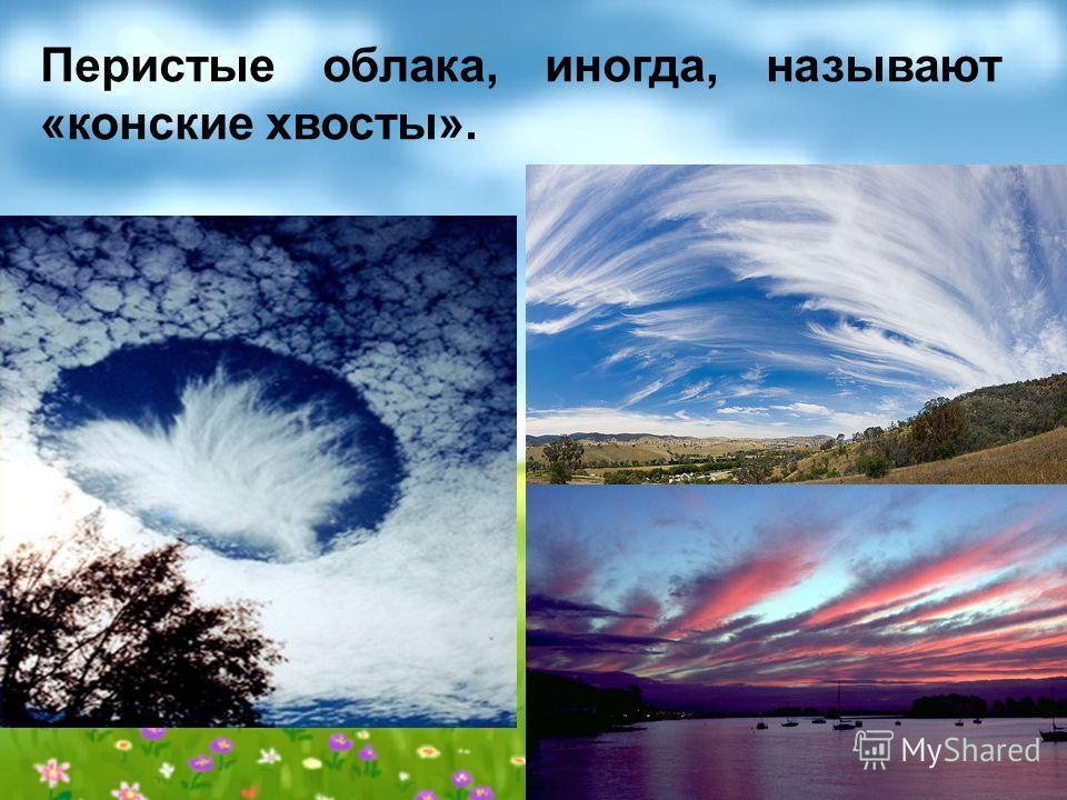 Перистые облака, иногда, называют «конские хвосты».