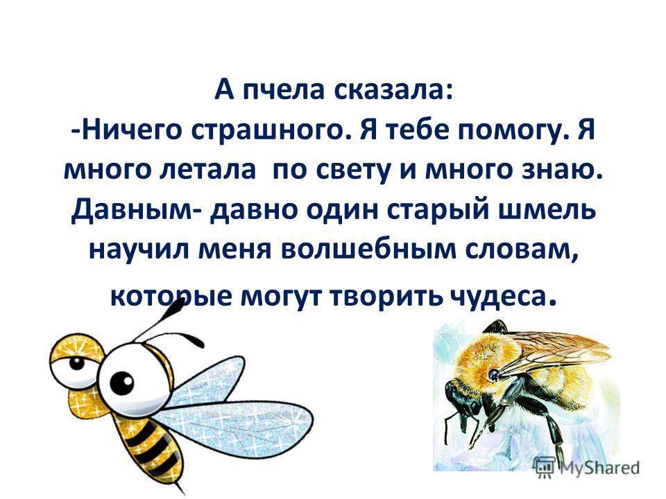 А пчела сказала: -Ничего страшного. Я тебе помогу. Я много летала по свету и много знаю. Давным- давно один старый шмель научил меня волшебным словам, которые могут творить чудеса.
