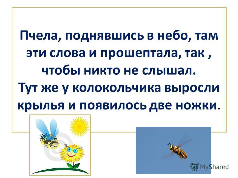 Пчела, поднявшись в небо, там эти слова и прошептала, так, чтобы никто не слышал. Тут же у колокольчика выросли крылья и появилось две ножки.