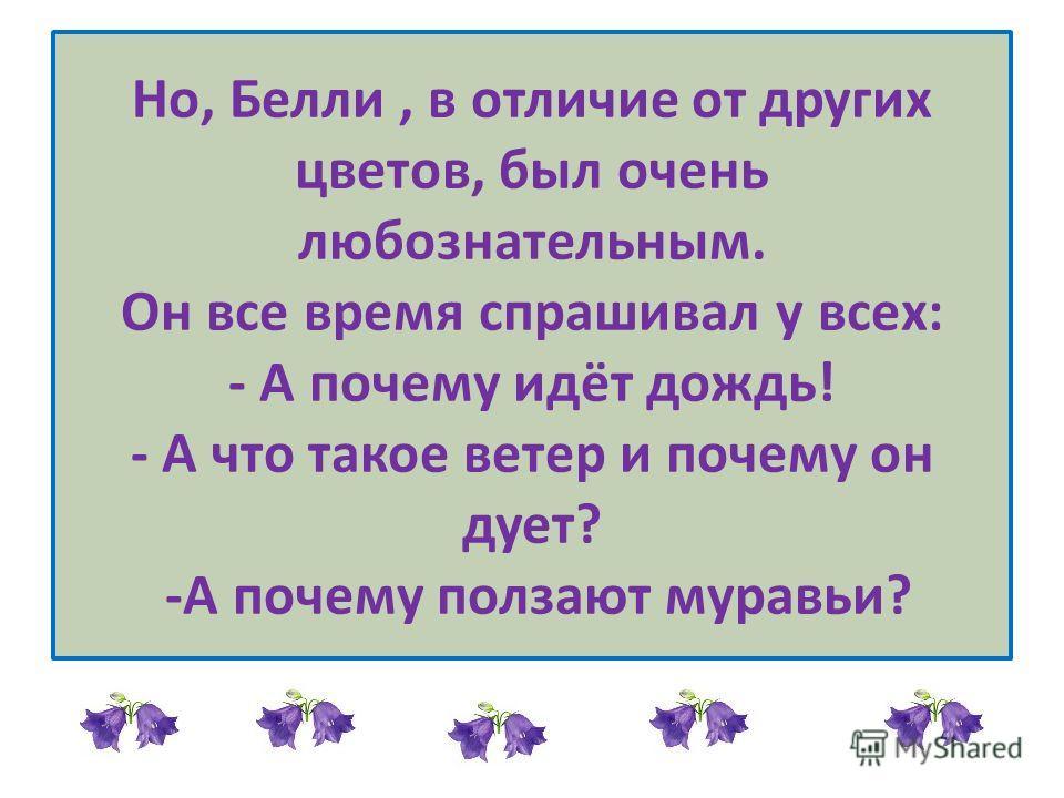 Но, Белли, в отличие от других цветов, был очень любознательным. Он все время спрашивал у всех: - А почему идёт дождь! - А что такое ветер и почему он дует? -А почему ползают муравьи?