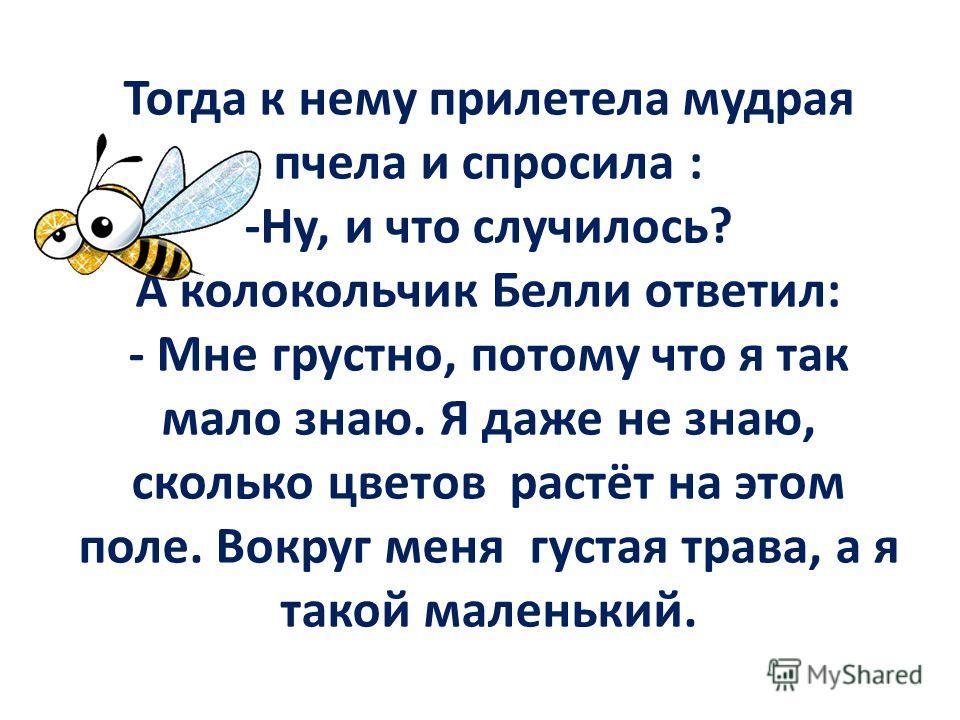 Тогда к нему прилетела мудрая пчела и спросила : -Ну, и что случилось? А колокольчик Белли ответил: - Мне грустно, потому что я так мало знаю. Я даже не знаю, сколько цветов растёт на этом поле. Вокруг меня густая трава, а я такой маленький.