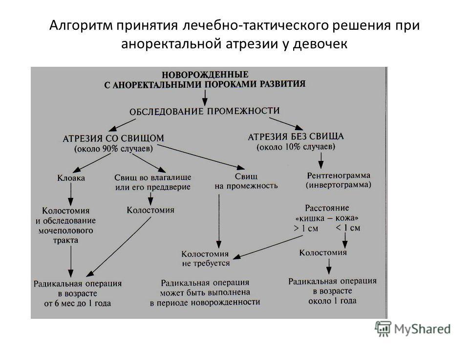 Алгоритм принятия лечебно-тактического решения при аноректальной атрезии у девочек