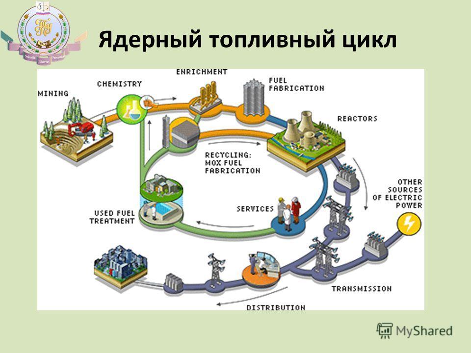 Ядерный топливный цикл