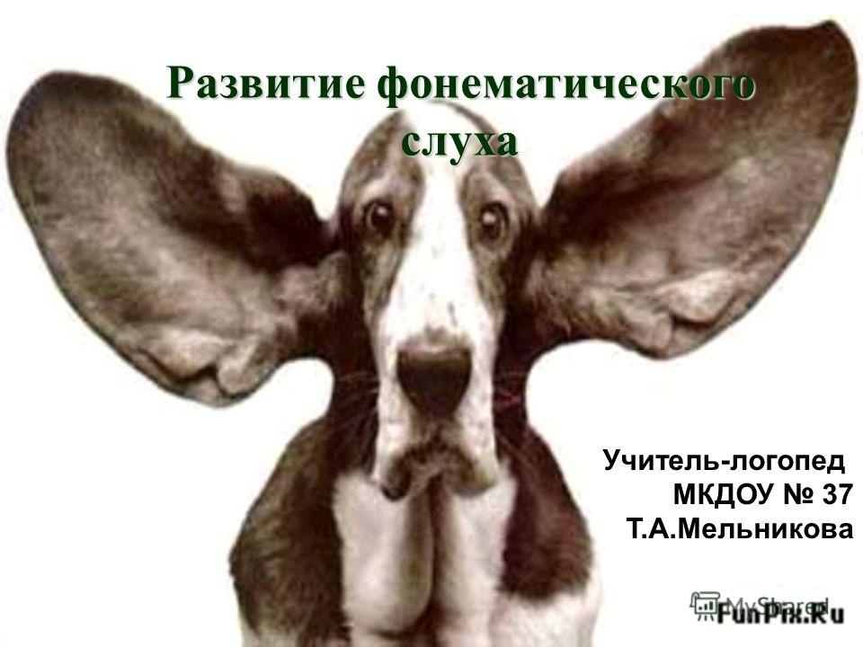 Развитие фонематического слуха Учитель-логопед МКДОУ 37 Т.А.Мельникова
