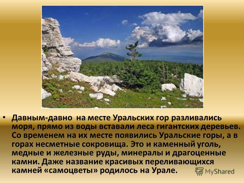 Давным-давно на месте Уральских гор разливались моря, прямо из воды вставали леса гигантских деревьев. Со временем на их месте появились Уральские горы, а в горах несметные сокровища. Это и каменный уголь, медные и железные руды, минералы и драгоценн