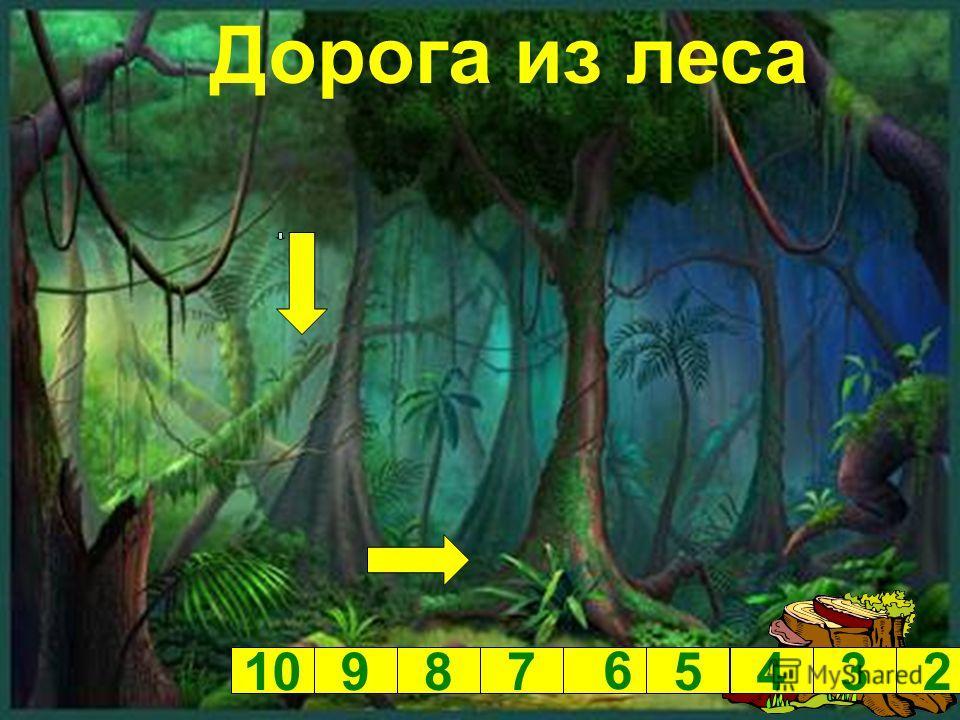 Дорога из леса 10987 6 5432