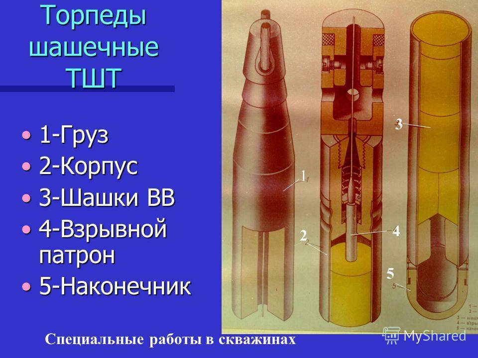 Специальные работы в скважинах Торпеды шашечные ТШТ 1-Груз1-Груз 2-Корпус2-Корпус 3-Шашки ВВ3-Шашки ВВ 4-Взрывной патрон4-Взрывной патрон 5-Наконечник5-Наконечник 1 2 3 4 5