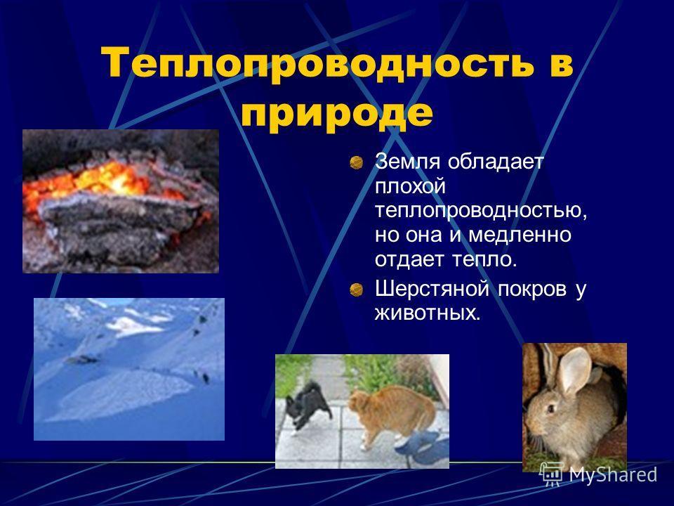 Теплопроводность в природе Земля обладает плохой теплопроводностью, но она и медленно отдает тепло. Шерстяной покров у животных.