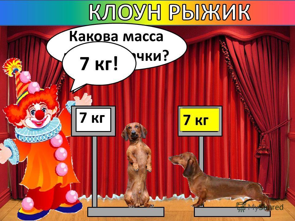 Какова масса моей собачки? 7 кг ? 7 кг!