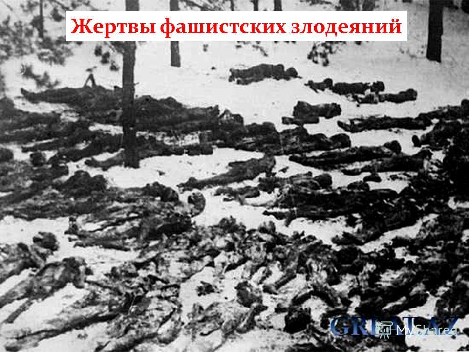 Жертвы фашистских злодеяний
