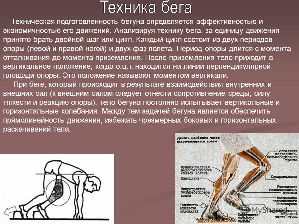 Техническая подготовленность бегуна определяется эффективностью и экономичностью его движений. Анализируя технику бега, за единицу движения принято брать двойной шаг или цикл. Каждый цикл состоит из двух периодов опоры (левой и правой ногой) и двух ф