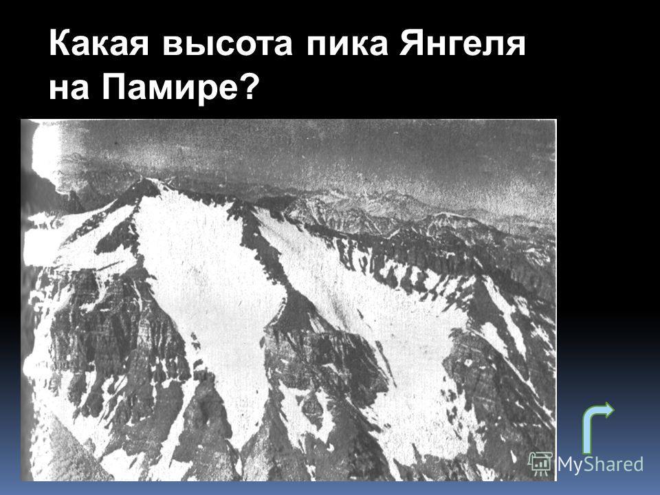 Какая высота пика Янгеля на Памире?