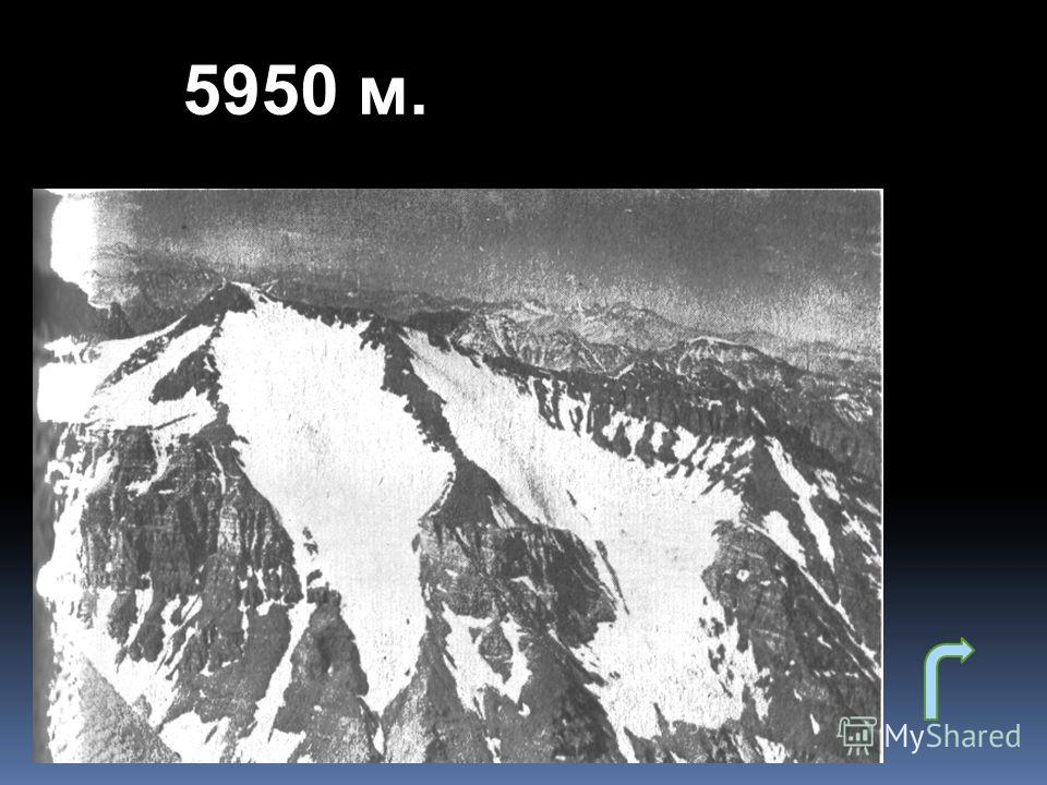 5950 м.