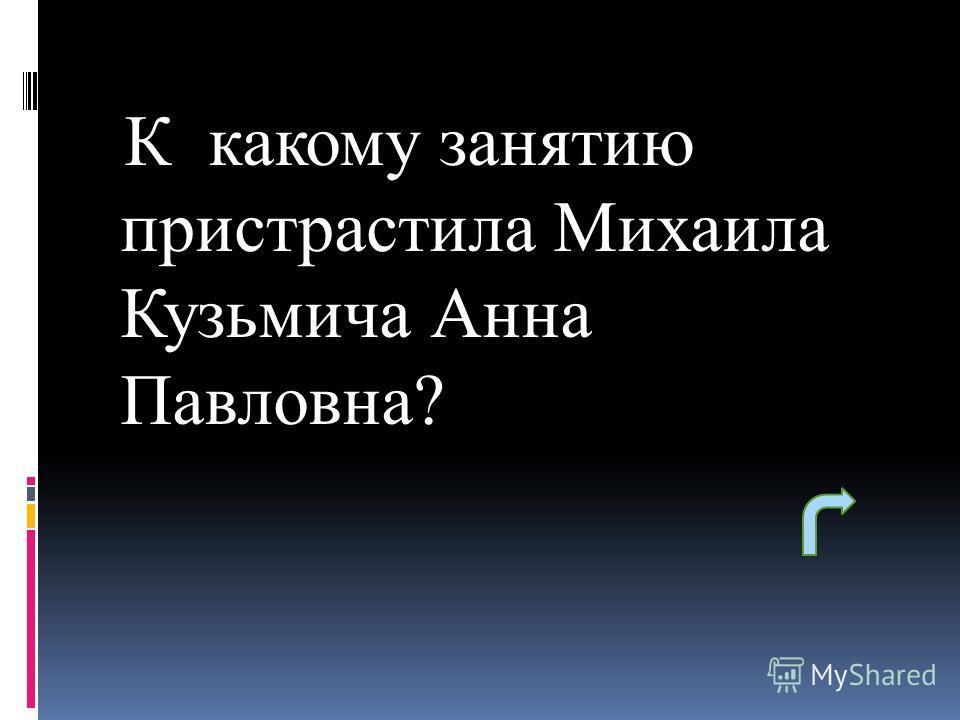К какому занятию пристрастила Михаила Кузьмича Анна Павловна?