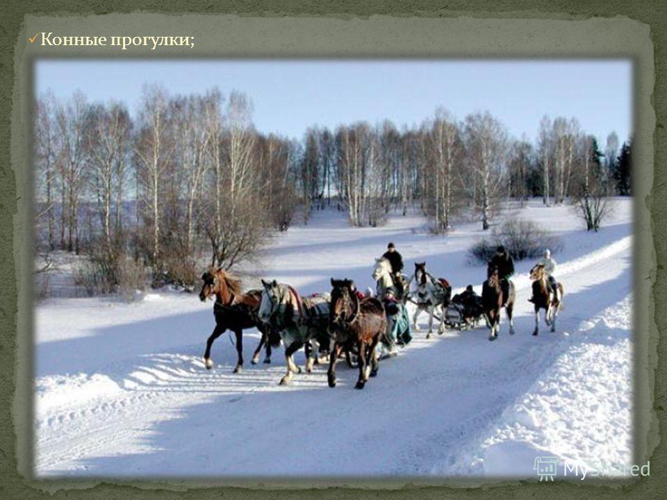Конные прогулки;