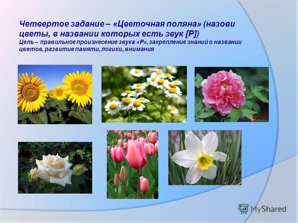 Четвертое задание – «Цветочная поляна» (назови цветы, в названии которых есть звук [Р]) Цель – правильное произнесение звука «Р», закрепление знаний о названии цветов, развитие памяти, логики, внимания http://www.google.ru/imgres?newwindow=1&biw=1366