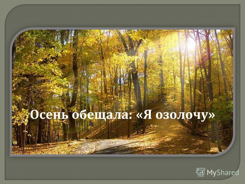 Осень обещала : « Я озолочу »