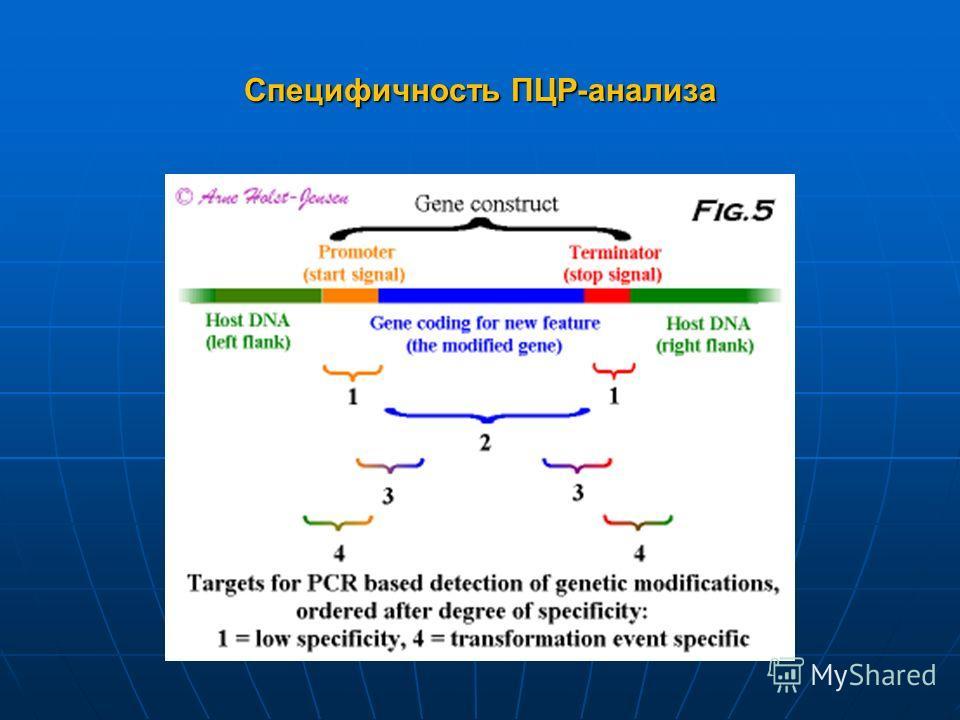 Специфичность ПЦР-анализа