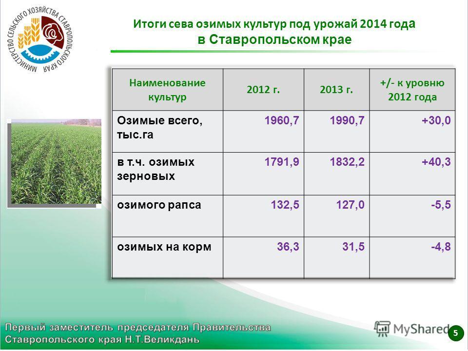 Итоги сева озимых культур под урожай 2014 год а в Ставропольском крае Наименование культур 2012 г.2013 г. +/- к уровню 2012 года Озимые всего, тыс.га 1960,71990,7+30,0 в т.ч. озимых зерновых 1791,91832,2+40,3 озимого рапса132,5127,0-5,5 озимых на кор
