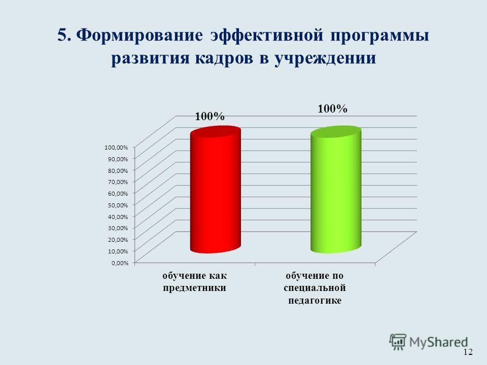 5. Формирование эффективной программы развития кадров в учреждении 100% 12