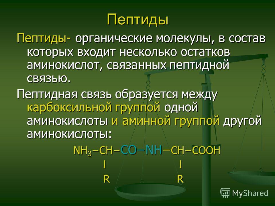 Пептиды Пептиды- органические молекулы, в состав которых входит несколько остатков аминокислот, связанных пептидной связью. Пептидная связь образуется между карбоксильной группой одной аминокислоты и аминной группой другой аминокислоты: NH 3 CH CONH