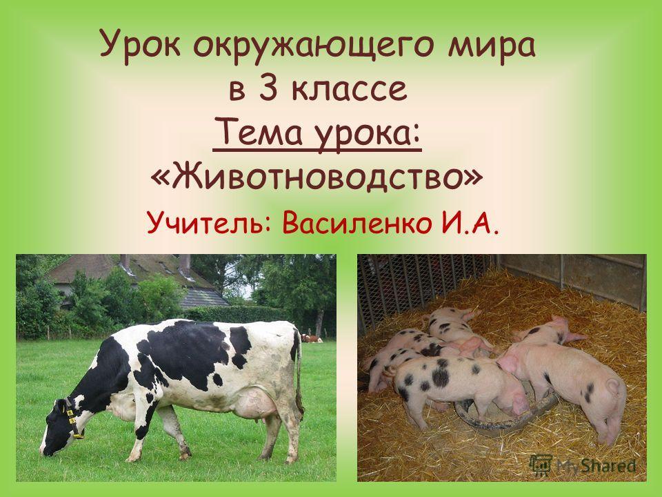 Урок окружающего мира в 3 классе Тема урока: «Животноводство» Учитель: Василенко И.А.