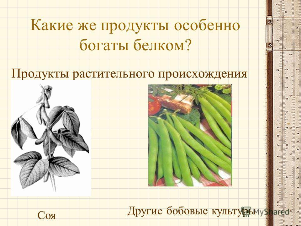 Какие же продукты особенно богаты белком? Продукты растительного происхождения Соя Другие бобовые культуры