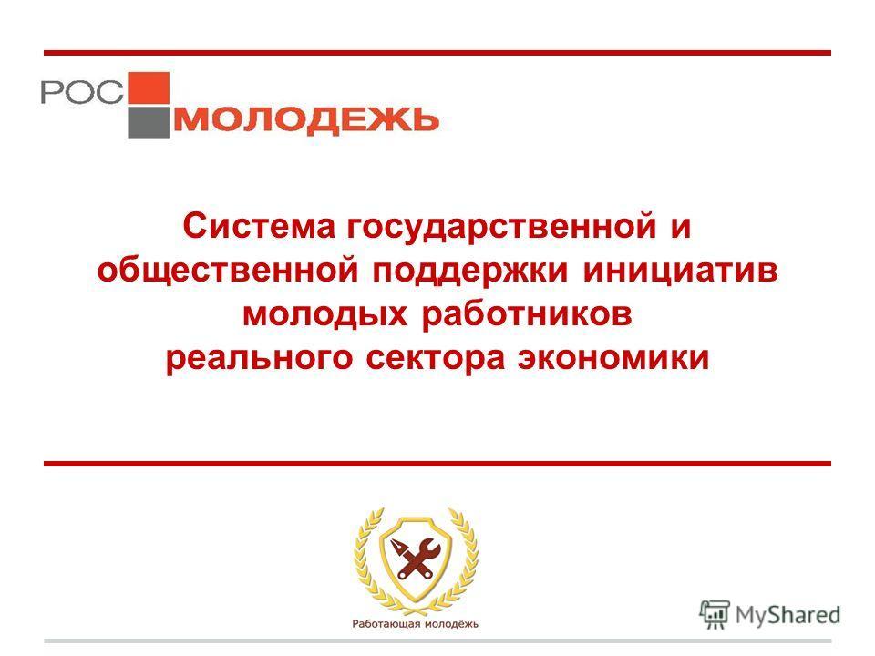 Система государственной и общественной поддержки инициатив молодых работников реального сектора экономики