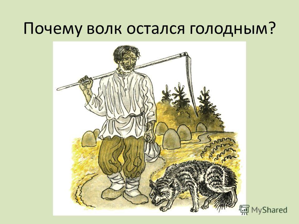 Почему волк остался голодным?