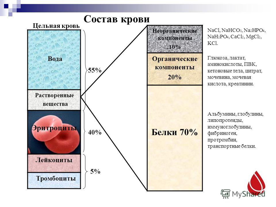 Состав крови Вода Растворенные вещества Эритроциты Цельная кровь Белки 70% Лейкоциты Тромбоциты Неорганические компоненты 10% Органические компоненты 20% NaCl, NaHCO 3, Na 2 HPO 4, NaH 2 PO 4, CaCl 2, MgCl 2, KCl. Глюкоза, лактат, аминокислоты, ПВК,