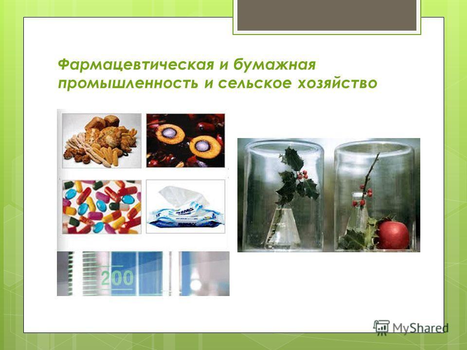 Фармацевтическая и бумажная промышленность и сельское хозяйство