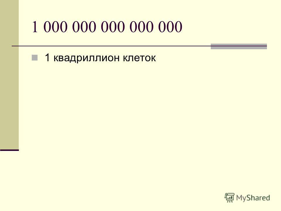 1 000 000 000 000 000 1 квадриллион клеток