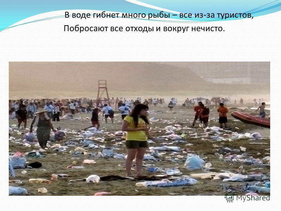 . В воде гибнет много рыбы – все из-за туристов, Побросают все отходы и вокруг нечисто.