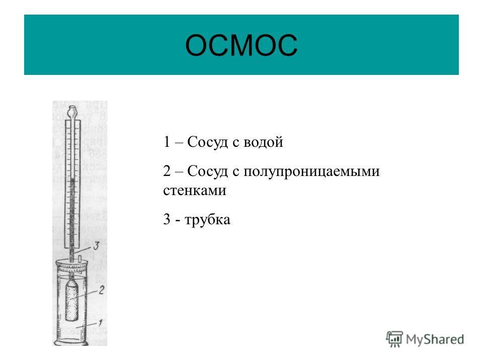 ОСМОС 1 – Сосуд с водой 2 – Сосуд с полупроницаемыми стенками 3 - трубка