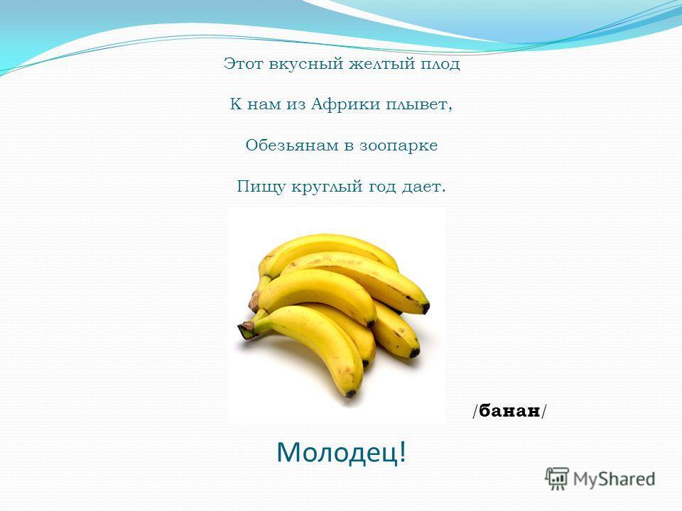 Этот вкусный желтый плод К нам из Африки плывет, Обезьянам в зоопарке Пищу круглый год дает. / банан / Молодец!
