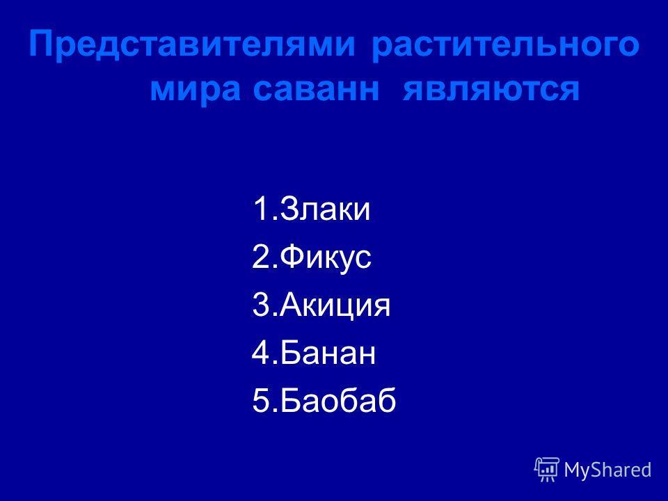 Представителями растительного мира саванн являются 1.Злаки 2.Фикус 3.Акиция 4.Банан 5.Баобаб