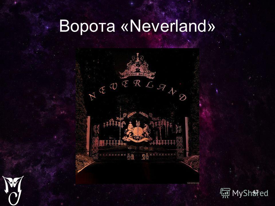 Ворота «Neverland» 47