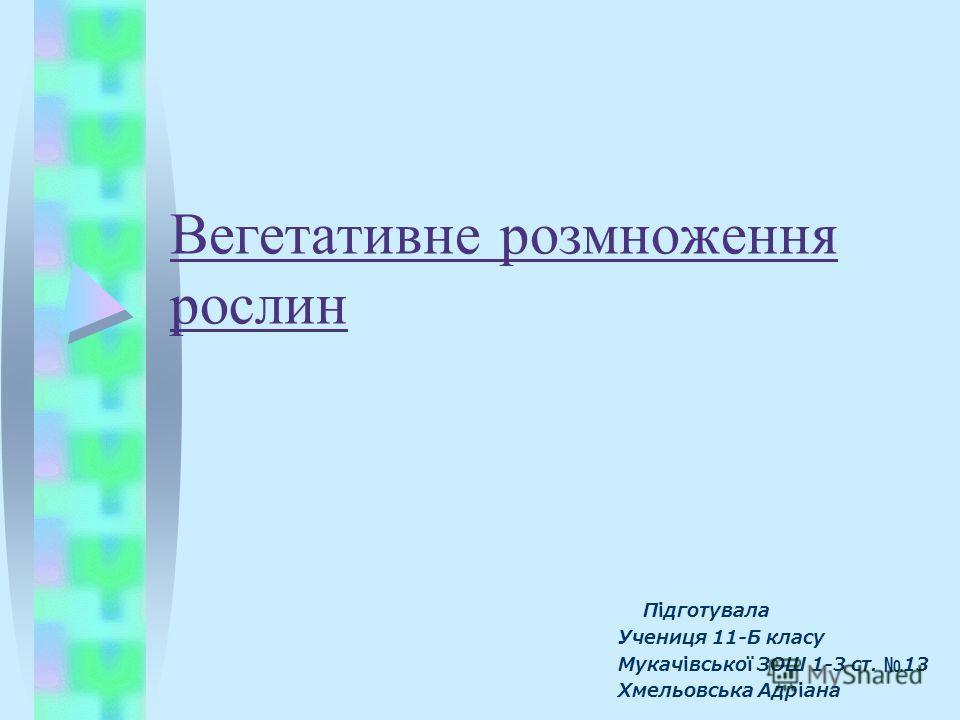 Вегетативне розмноження рослин Підготувала Учениця 11-Б класу Мукачівської ЗОШ 1-3 ст. 13 Хмельовська Адріана