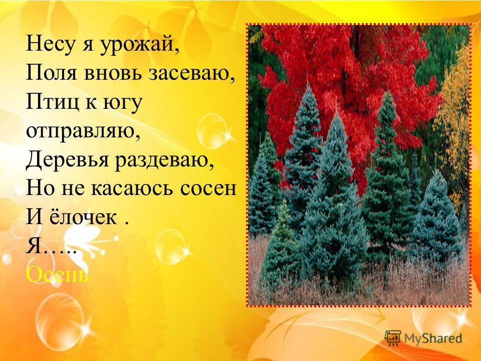 Несу я урожай, Поля вновь засеваю, Птиц к югу отправляю, Деревья раздеваю, Но не касаюсь сосен И ёлочек. Я….. Осень