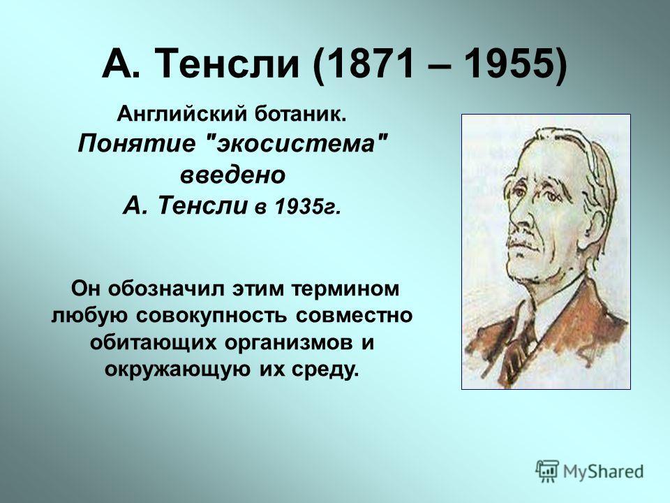 А. Тенсли (1871 – 1955) Английский ботаник. Понятие экосистема введено А. Тенсли в 1935г. Он обозначил этим термином любую совокупность совместно обитающих организмов и окружающую их среду.