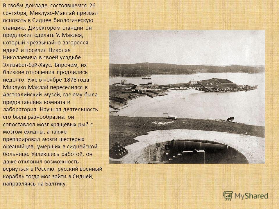 В своём докладе, состоявшемся 26 сентября, Миклухо-Маклай призвал основать в Сиднее биологическую станцию. Директором станции он предложил сделать У. Маклея, который чрезвычайно загорелся идеей и поселил Николая Николаевича в своей усадьбе Элизабет-б