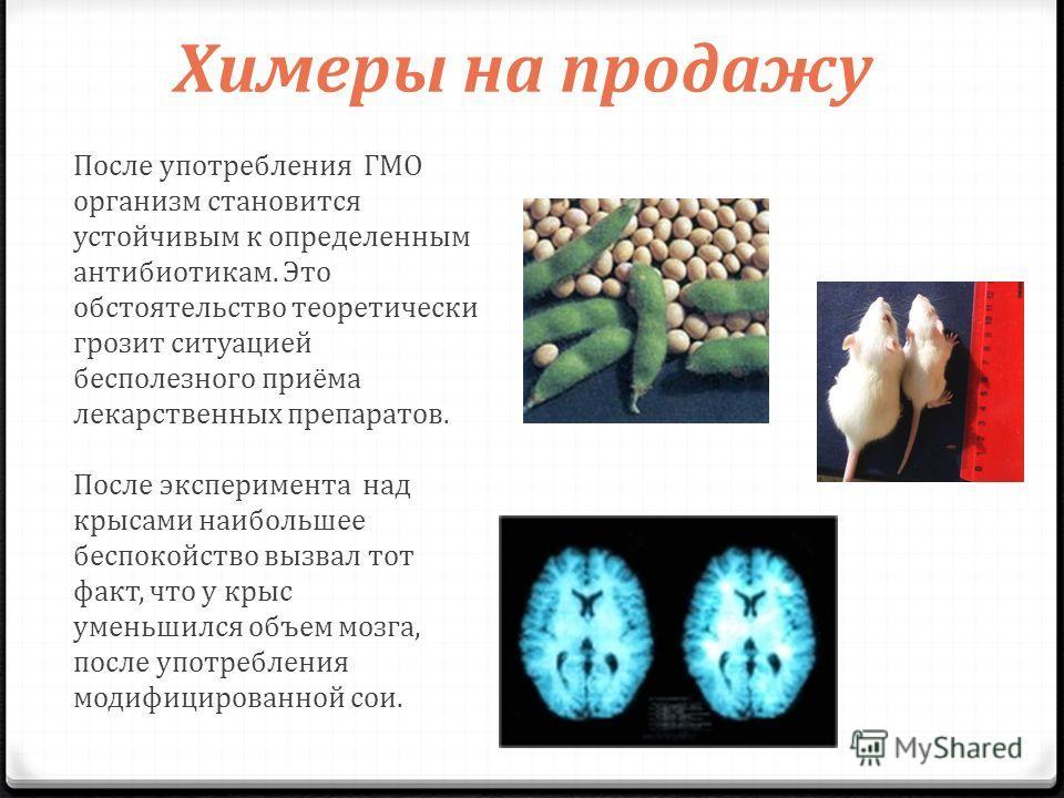 Химеры на продажу После употребления ГМО организм становится устойчивым к определенным антибиотикам. Это обстоятельство теоретически грозит ситуацией бесполезного приёма лекарственных препаратов. После эксперимента над крысами наибольшее беспокойство