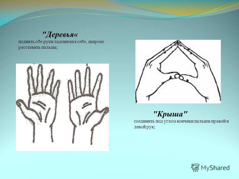 Деревья« поднять обе руки ладонями к себе, широко расставить пальцы; Крыша соединить под углом кончики пальцев правой и левой рук;