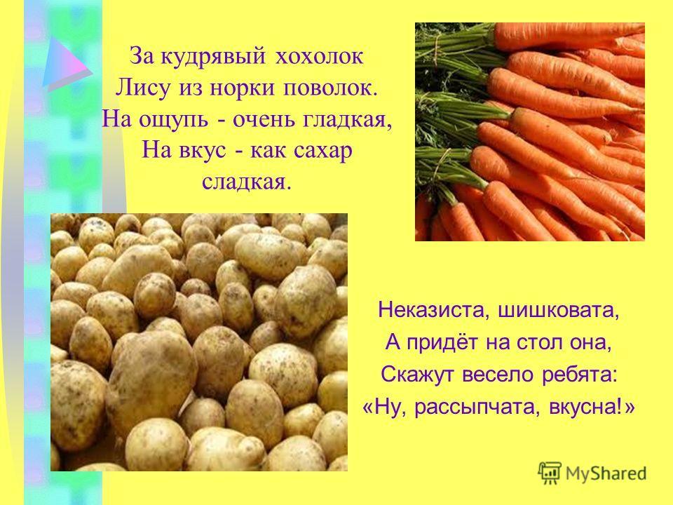 Загадки про овощи и фрукты: Само с кулачок, красный бочок, Потрогаешь - гладко, откусишь - сладко.