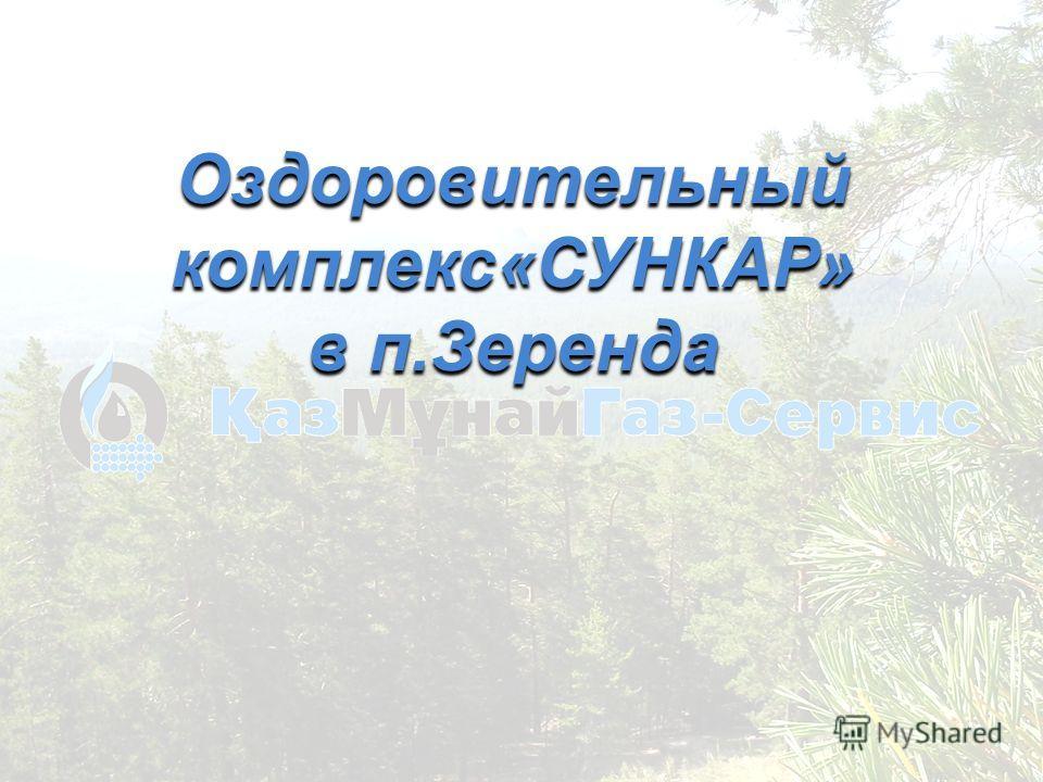 Оздоровительный комплекс«СУНКАР» в п.Зеренда